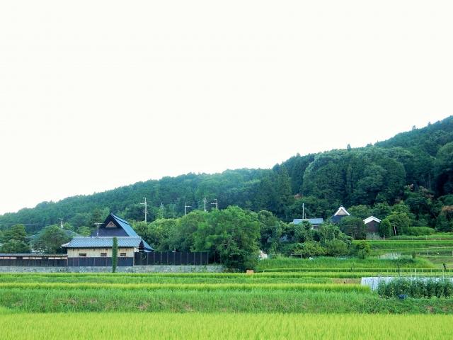僕の田舎紹介