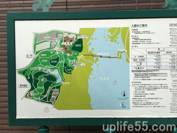 お盆休みに茨城自然博物館へ!9歳、4歳の子供は楽しめた?駐車場混雑は?