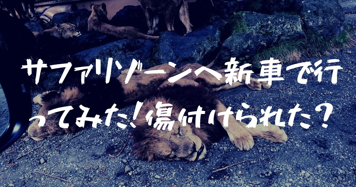 富士サファリパークのサファリゾーンに新車でGo!傷が一切付かなかった理由とは?